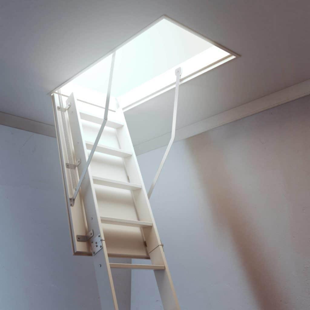 Attic scuttle or roof scuttle ladder